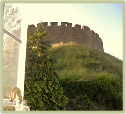 Totnes castle as viewed from our harp lessons studio